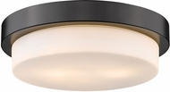 Golden Lighting 1270-13-BLK Multi-Family Matte Black Ceiling Light Fixture