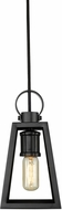 Golden Lighting 3239-S-BLK-BLK Abbott Modern Black Mini Ceiling Light Pendant