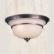 Hi-Lite Manufacturing H-1972-F 9  Tall Ceiling Light