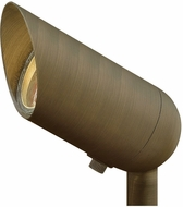 Hinkley Landscape 1536MZ Hardy Island Contemporary Matte Bronze Outdoor Flood Light