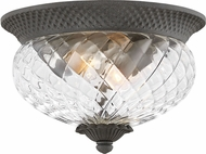 Hinkley 2128MB Plantation Museum Black 12  Ceiling Light