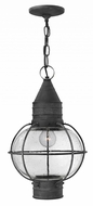 Hinkley 2202DZ Cape Cod Nautical Aged Zinc Outdoor Hanging Pendant Lighting