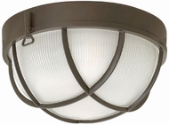 Hinkley 2413BZ Marina Nautical Bronze Exterior Ceiling Lighting