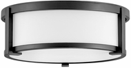 Hinkley 3241BK Lowell Modern Black 13  Ceiling Light Fixture