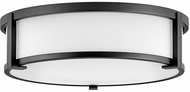 Hinkley 3243BK Lowell Contemporary Black 16  Ceiling Lighting Fixture