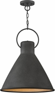 Hinkley 3555DZ Winnie Contemporary Aged Zinc / Distressed Black Drop Lighting Fixture