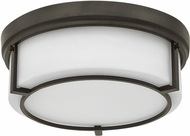 Hinkley 3972KZ Weston Buckeye Bronze Ceiling Light Fixture