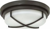 Hinkley 4381KZ Halsey Buckeye Bronze Flush Mount Lighting