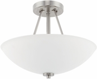 Home Place 218921BN Brushed Nickel Ceiling Lighting