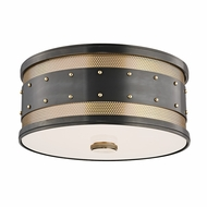 Hudson Valley 2202-AOB Gaines Retro Aged Old Bronze Finish 5.5 Tall Ceiling Lighting Fixture