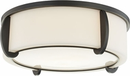 Hudson Valley 4616-OB Talon Contemporary Old Bronze 15.5  Ceiling Light Fixture
