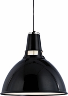 Hudson Valley 6820-BPN Lydney Contemporary Black / Polished Nickel 19.5  Pendant Lighting