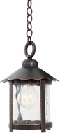 Kalco 9556 Winston Traditional Outdoor Ceiling Light Pendant