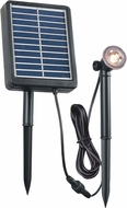 Kenroy Home 60611 1W Solar Spot Light Black Solar Spot Light