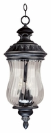 Kenroy Home 91105EP Troubadour Antique Style 24 Inch Tall Outdoor Pendant Lamp - Ebony Pearl