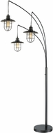 Lite Source LS-81457D-BRZ Lanterna II Modern Dark Bronze Floor Lamp