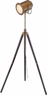 Lite Source LS-82940 Saga Modern Brass Fluorescent Light Floor Lamp