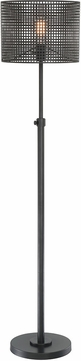 Lite Source LS-83017 Hamilton Modern Black Lighting Floor Lamp