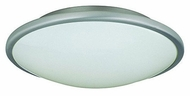 Lite Source LS5410 Pegeen Contemporary 13  Ceiling Lamp