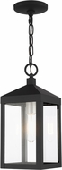 Livex 20591-04 Nyack Black with Brushed Nickel Cluster Outdoor Pendant Light