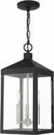 Livex 20593-04 Nyack Black with Brushed Nickel Cluster Outdoor Hanging Light