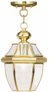 Livex 2152-02 Monterey Polished Brass Hanging Pendant Light