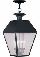 Livex 2174-04 Mansfield Black Lighting Pendant