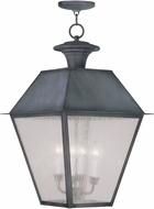 Livex 2174-61 Mansfield Charcoal Hanging Lamp
