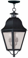 Livex 2546-04 Amwell Traditional Black Hanging Lamp