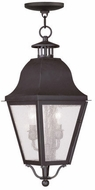 Livex 2546-07 Amwell Traditional Bronze Hanging Light
