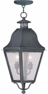 Livex 2546-61 Amwell Traditional Charcoal Pendant Light Fixture