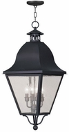 Livex 2547-04 Amwell Traditional Black Pendant Lighting Fixture