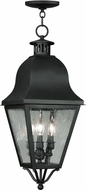 Livex 2557-04 Amwell Traditional Black Pendant Hanging Light