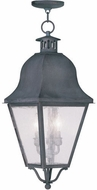 Livex 2557-61 Amwell Traditional Charcoal Drop Lighting