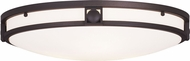 Livex 4488-07 Titania Bronze Indoor / Outdoor Ceiling Lighting Fixture