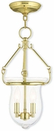 Livex 50294-02 Canterbury Polished Brass Hanging Light Fixture