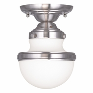 Livex 5720-91 Oldwick Brushed Nickel Ceiling Lighting Fixture