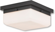 Livex 65536-92 Allure English Bronze ADA Ceiling Light Fixture