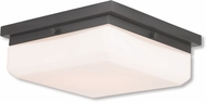 Livex 65537-92 Allure English Bronze ADA Overhead Lighting