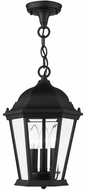 Livex 7564-14 Hamilton Traditional Textured Black Outdoor 10  Ceiling Light Pendant