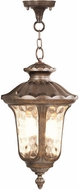 Livex 7665-50 Oxford Traditional Moroccan Gold Hanging Pendant Light