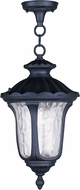 Livex 7854-04 Oxford Traditional Black Ceiling Pendant Light
