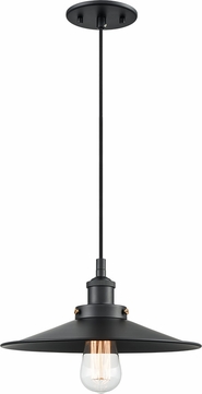 Matteo C46112BKBK Bulstrode's Workshop Modern Black 11.75  Mini Drop Ceiling Lighting