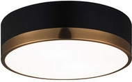 Matteo M14302BKAG Trydor Contemporary Black and Aged Gold Glass 12 Home Ceiling Lighting