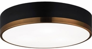 Matteo M14303BKAG Trydor Contemporary Black and Aged Gold Brass 16 Ceiling Lighting