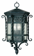 Maxim 30128CDCF Scottsdale Mediterranean Country Forge 21 Tall Outdoor Hanging Lamp
