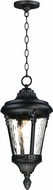 Maxim 3058WGBK Sentry Black Exterior Drop Ceiling Light Fixture