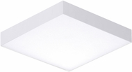 Maxim 57665WTWT Trim Contemporary White LED Outdoor 4.5  Ceiling Light Fixture