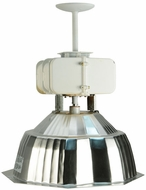 Meyda Tiffany 142408 Stadium 18 Inch Wide Hanging Light Fixture
