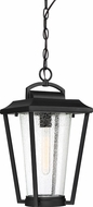 Nuvo 60-6514 Lakeview Aged Bronze / Glass Outdoor Pendant Lighting